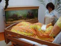 Hospic Prachatice 7.