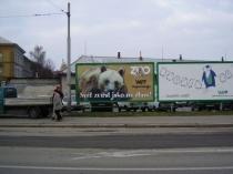 zoo 6.